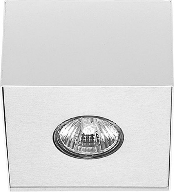 CARSON white-silver I plafon 5573