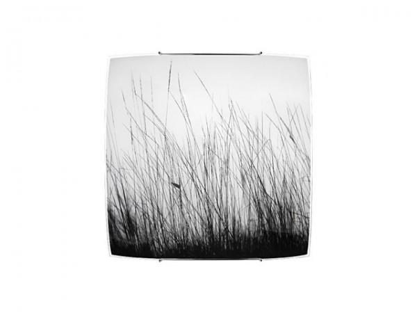 BLACK GRASS 7 5652