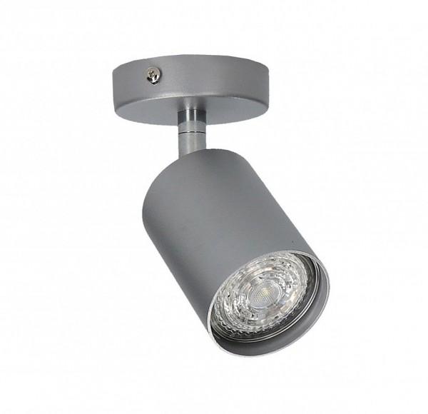 EYE SPOT silver 1 6138